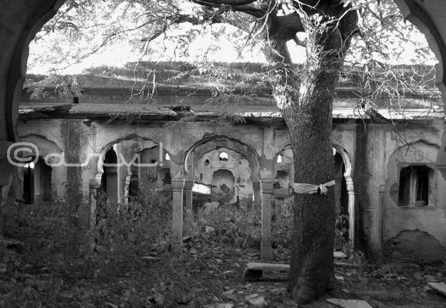 ruins-old-galta-temples-jaipur