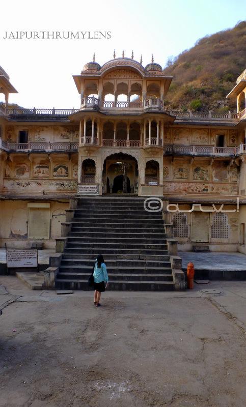tourist-monkey-temple-jaipur-galtaji-gyan-gopal-mandir