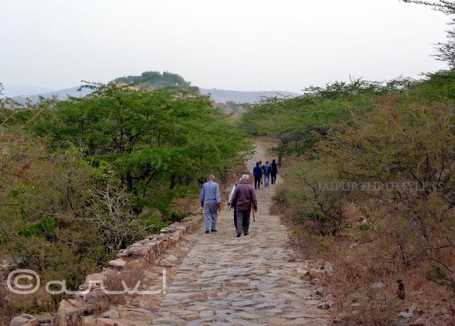 jaipur-morning-walk-benefits-friends-nature