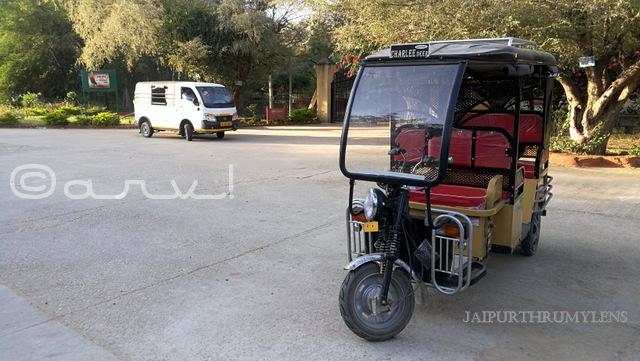 how-to-reach-nahargarh-zoological-biological-park-jaipur--e-rickshaw-ride