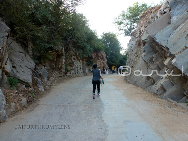 how-to-reach-nahargarh-zoological-biological-park-jaipur-walking-route