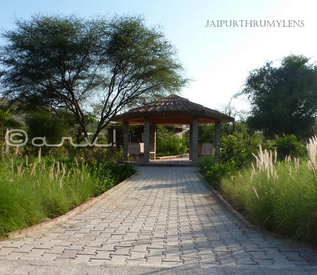 landscaping-resting-hut-toilet-nahargarh-zoological-biological-park-jaipur