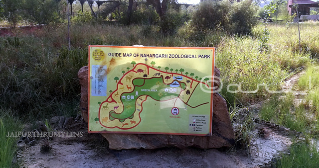 map-nahargarh-zoological-biological-park-jaipur
