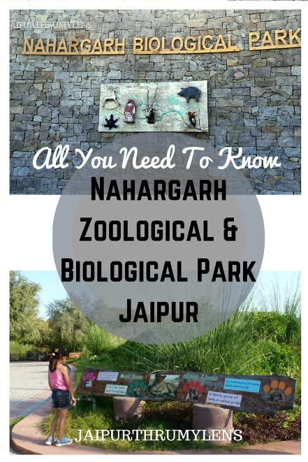 nahargarh zoological and biological park jaipur zoo review guide
