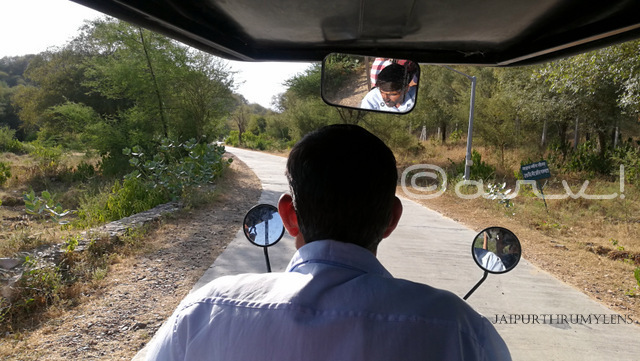 reaching-nahargarh-zoological-biological-park-jaipur-e-rickshaw-ride-photo