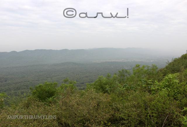 trekking-jaipur-nahargarh-biological-zoological-park-view