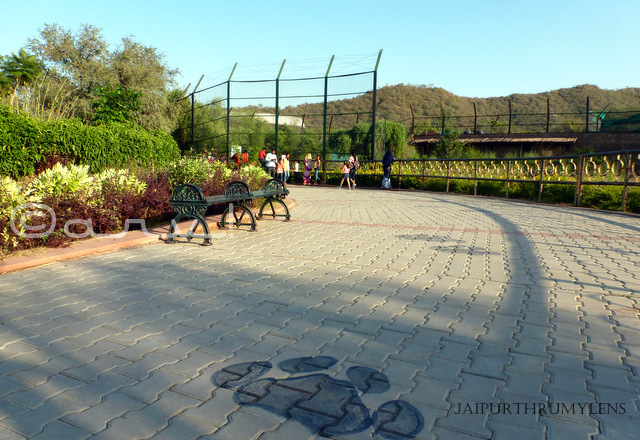 walkway-photo-nahargarh-zoological-biological-park-kukas-jaipur