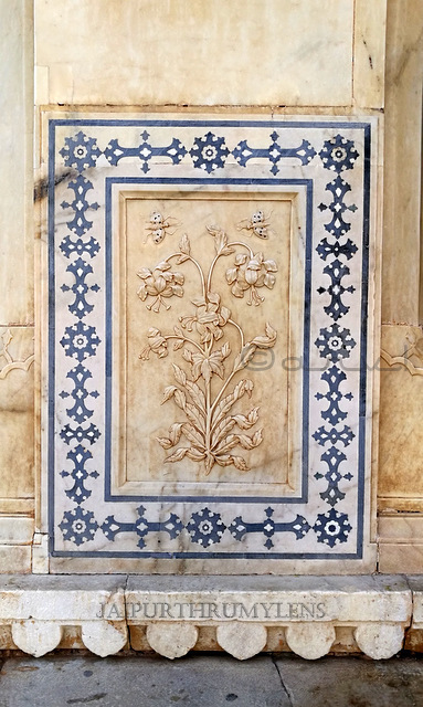 sheesh-mahal-magic-flower-amer-jaipur-photo-blog