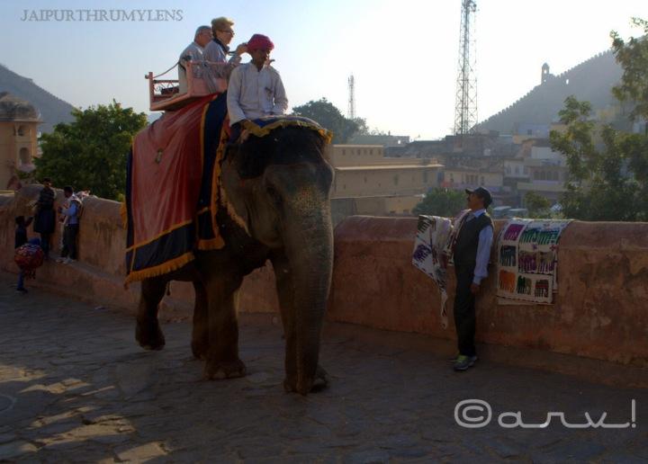 tourist-scams-jaipur-amer-fort