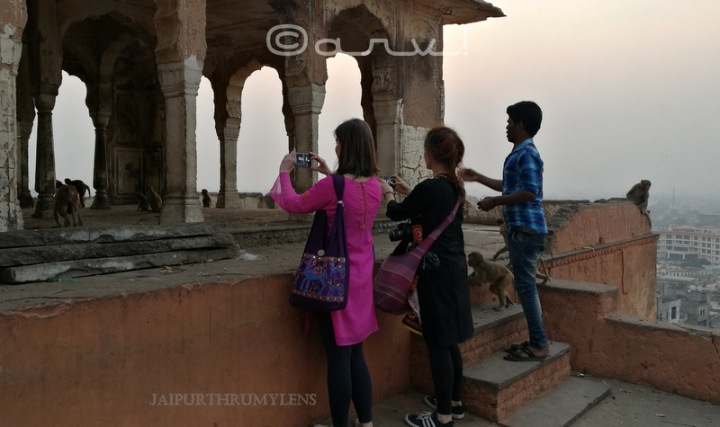 tourists-jaipur-monkey-temple-galtaji-enroute-photo