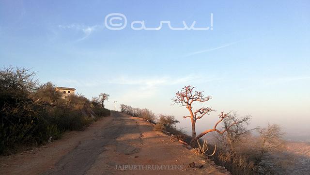 harshnath-ki-pahadi-rasta-sikar-rajasthan