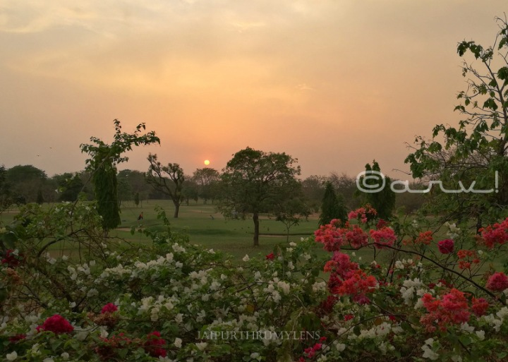 rambagh-golf-club-jaipur-sunset-blog