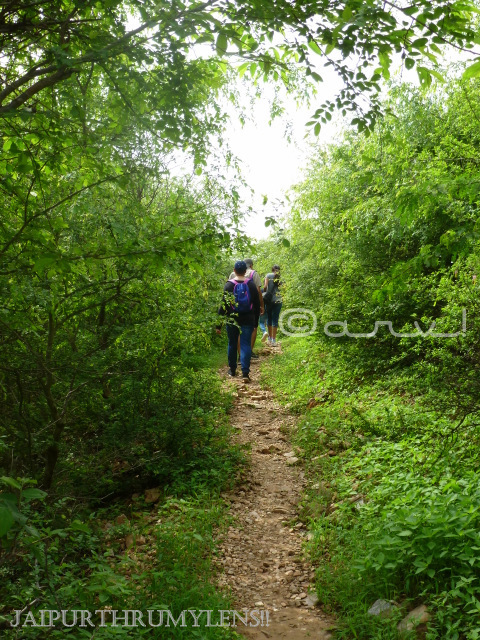 trekking-in-jaipur-aravali-hills-monsoon-india