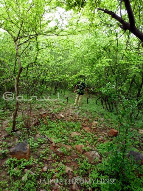trekkingin-jaipur-aravali