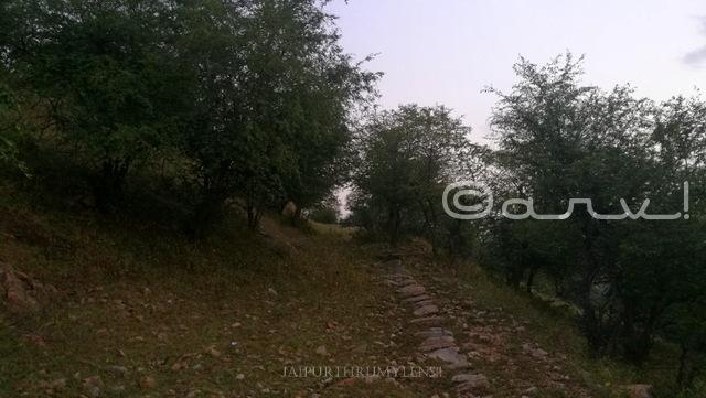 hiking-trail-in-jaipur