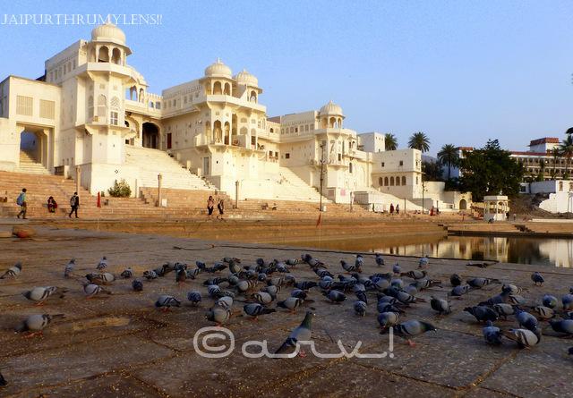 The Pushkar Travel Guide: Eat, Pray, and Love