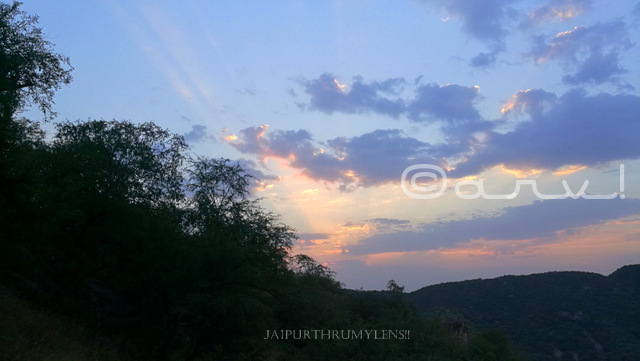 sunrise-in-jaipur-forest-aravali-hills