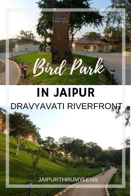 bird-park-jaipur-dravyavati-river-front #jaipur #park #travel