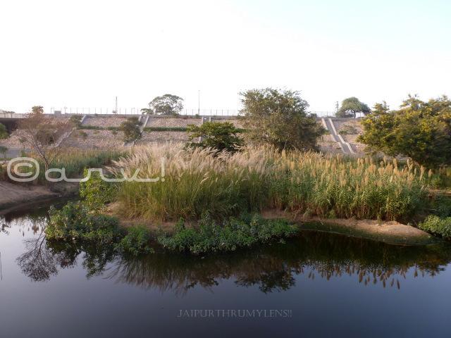 dravyavati-river-jaipur-tata-project