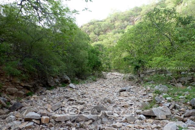 dravyavati-river-origin-history-in-jaipur
