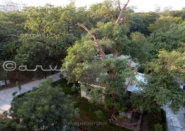 park-and-garden-in-jaipur-for-couple