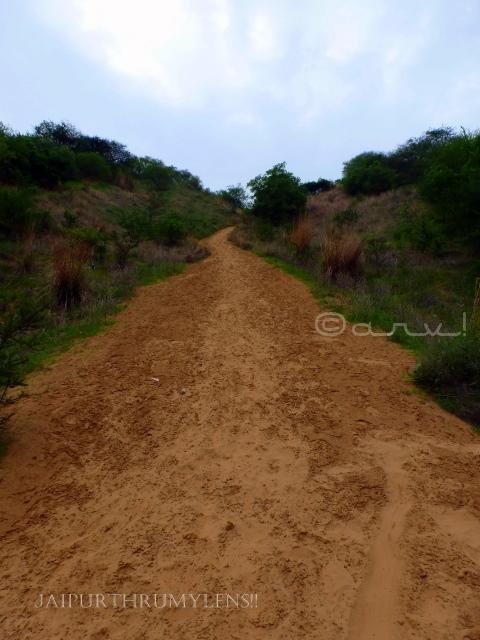 jaipur-desert-camp-sand-dunes-laxman-dungari
