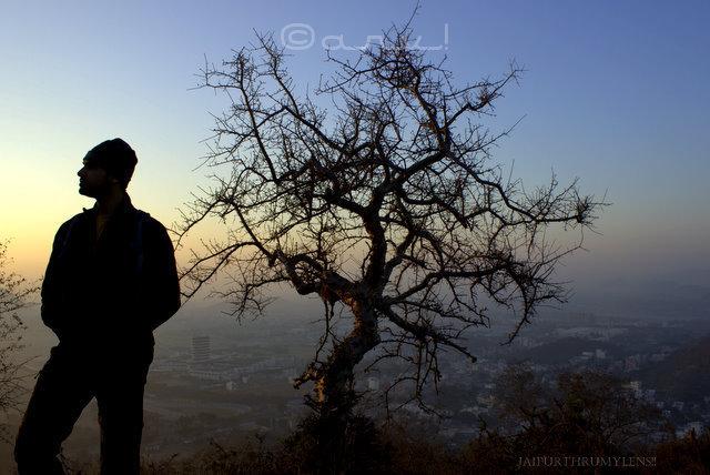 man-and-tree- silhouette-jaipur-sunrise-skywatch