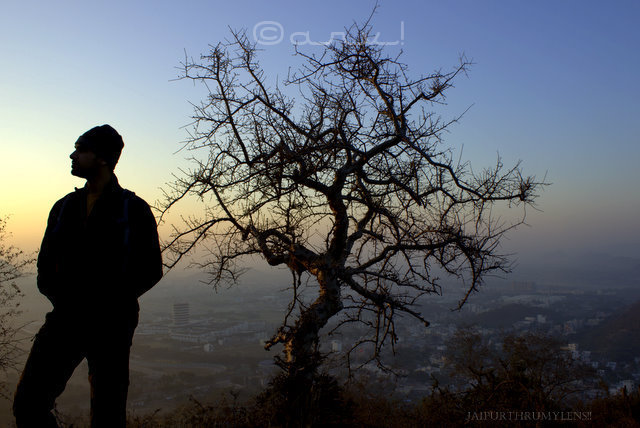 man-and-tree- silhouette-jaipur-sunrise-skywatch