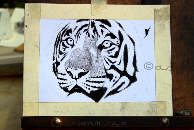 hand-sketch-bengal-tiger-artist-india
