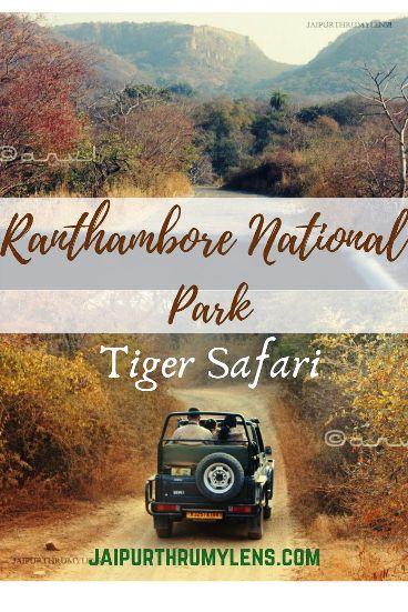 ranthambore-wildlife-park-tiger-safari-travel-blog-jaipurthrumylens