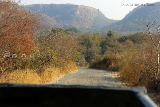 road-trip-to-ranthambore-fort-rajasthan-from-jaipur
