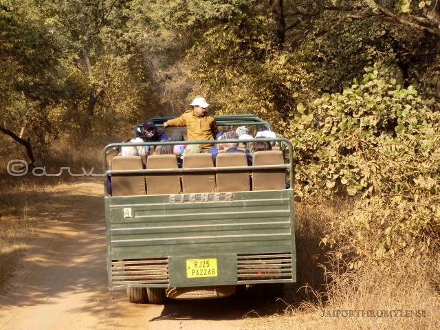 safari-booking-ranthambore-nationla-park