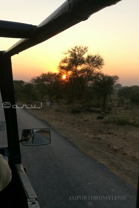 sunset-in-ranthamore-national-park-rajasthan