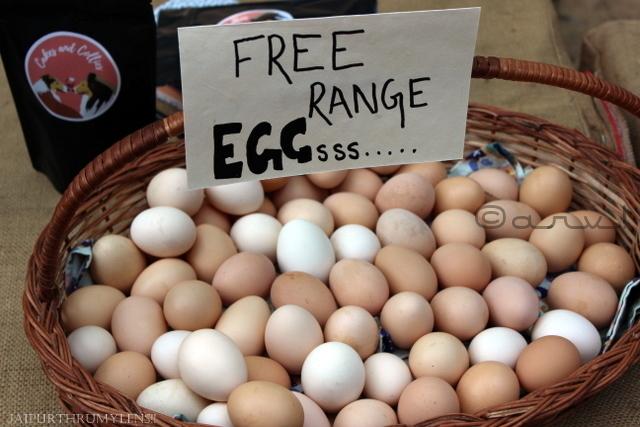 free-range-eggs-india-jaipur-farmers-market