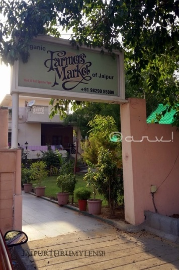 the-farmer-market-of-jaipur-organic-vegetables-food