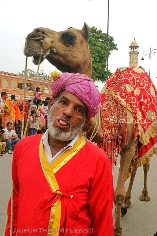 jaipur-teej-festival-procession-man-camel
