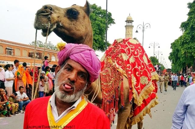 Jester | Teej Festival Jaipur