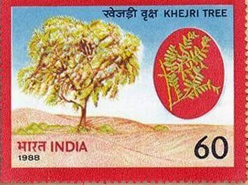 khejri-tree-stamp-india-prosopis-cineraria