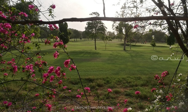 rambagh-golf-course-club-jaipur-blog
