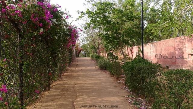 running-track-jaipur-central-park