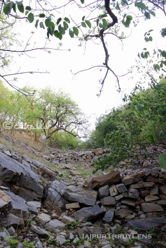 trekking-route-jaipur-hathni-kund