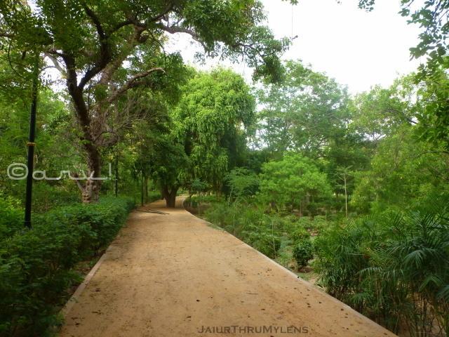 best-park-in-jaipur-sawan-bhado-ramniwas-garden