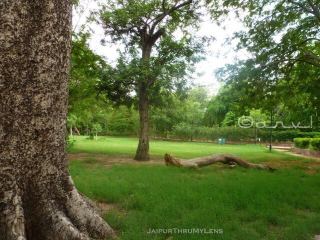 garden-near-me-jaipur-ramniwas-bagh-sawan-bhado