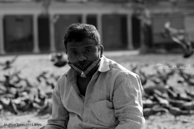 pigeon-feeding-spot-grain-seller-with-mask-jaipur-street-photography
