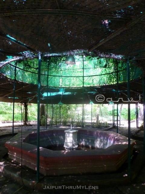 vintage-fountain-ramniwas-garden-jaipur