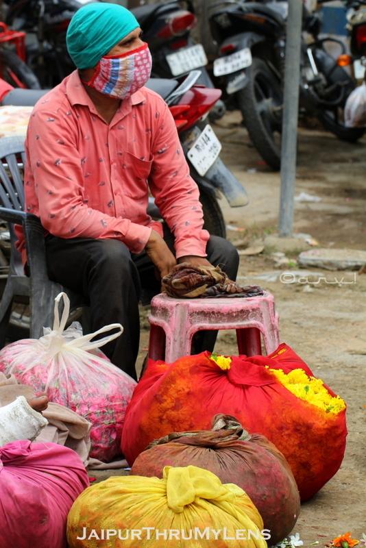 farmer-with-flowers-morning-market-jaipur