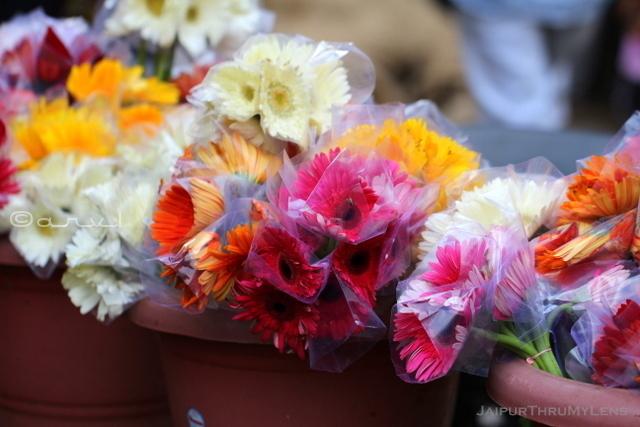 jaipur-flower-market-blog