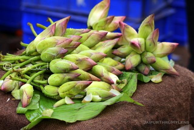 lotus-flowers-wikipedia-Nelumbo nucifera-jaipur-market