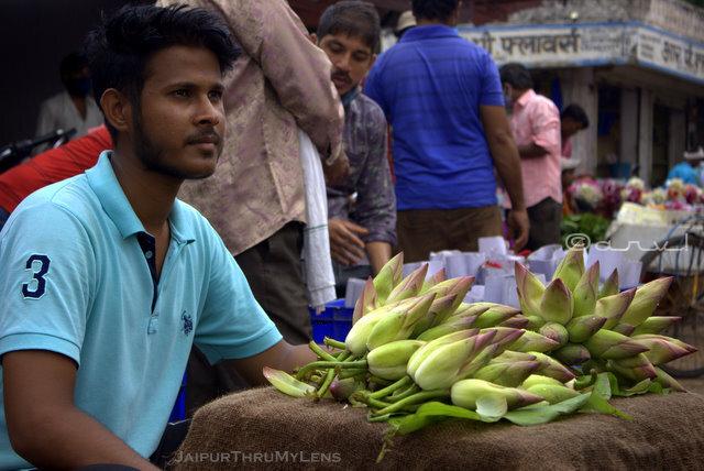 man-selling-lotus-flowers-morning-market-jaipur-india