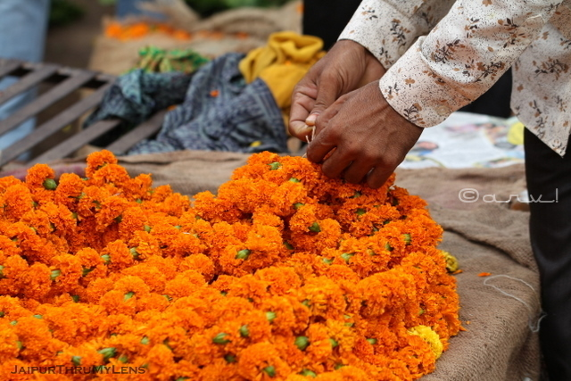 marigold-garland-flower-market-jaipur-india